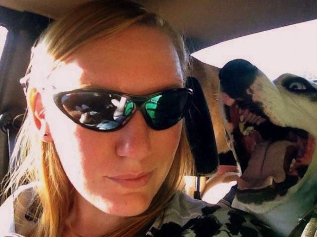 Os melhores photobombs de cachorros (2)