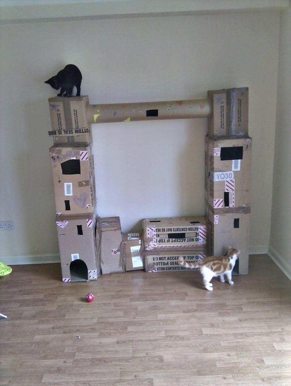 Esconderijos-mais-criativos-para-gatos-Blog-Animal (10)