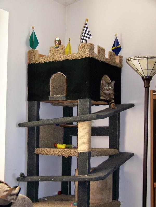 Esconderijos-mais-criativos-para-gatos-Blog-Animal (17)