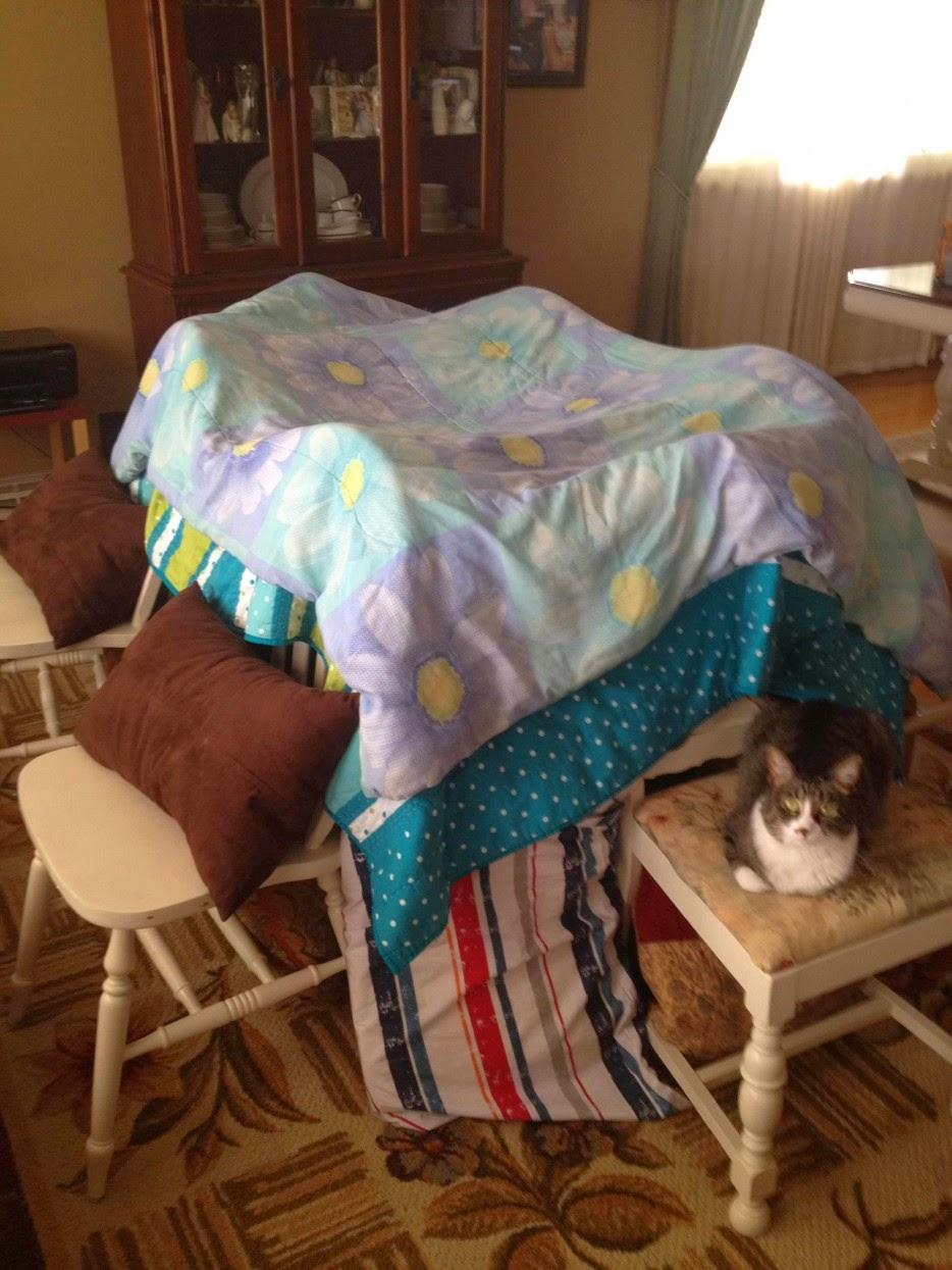 Esconderijos-mais-criativos-para-gatos-Blog-Animal (3)