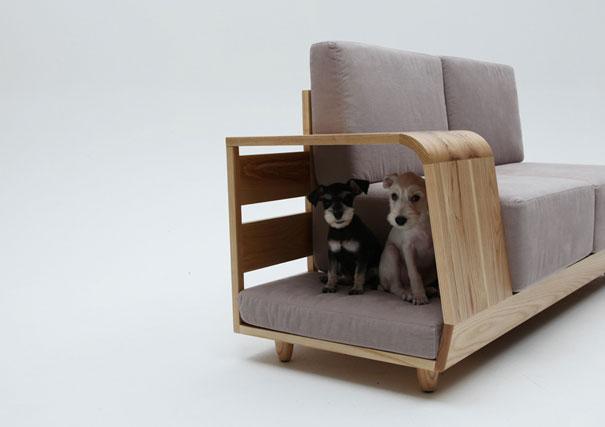 Ideias criativas para cachorros (2)