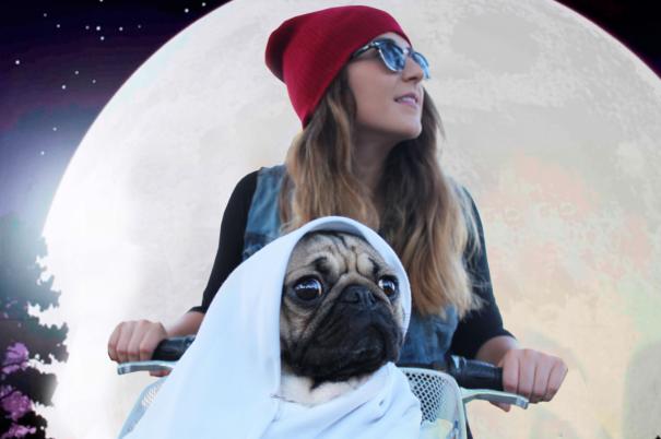 Doug - O Pug que adora Halloween (1)