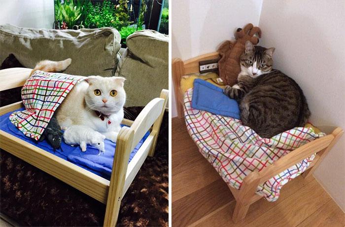 Camas de bonecas transformadas em camas para gatos (11)
