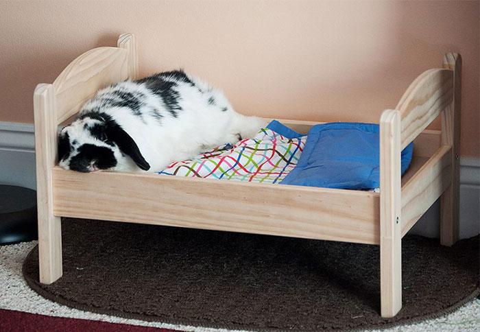 Camas de bonecas transformadas em camas para gatos (3)