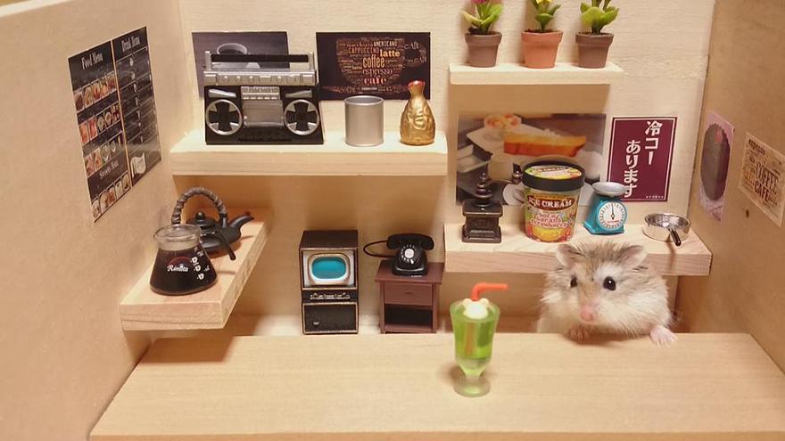 Hamster barman servindo mini alimentos e bebidas (1)