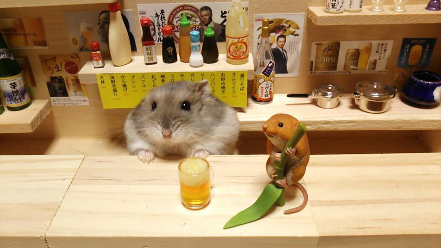 Hamster barman servindo mini alimentos e bebidas (10)