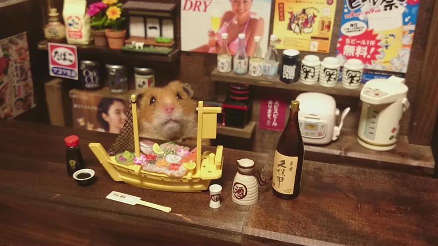 Hamster barman servindo mini alimentos e bebidas (13)