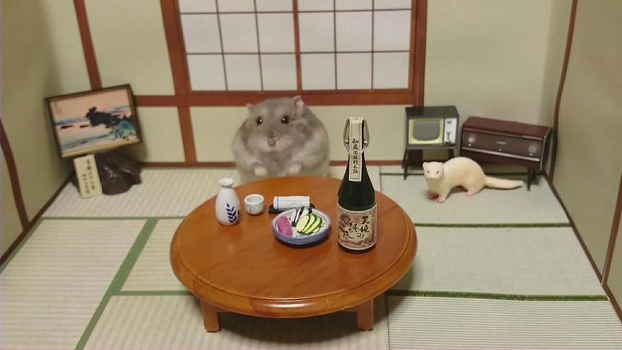 Hamster barman servindo mini alimentos e bebidas (4)