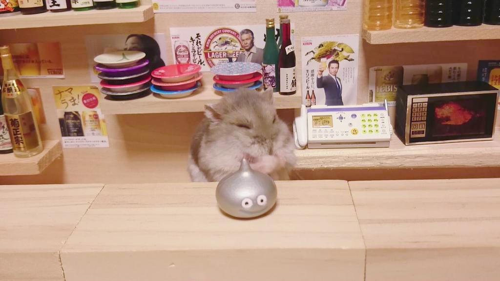 Hamster barman servindo mini alimentos e bebidas (6)