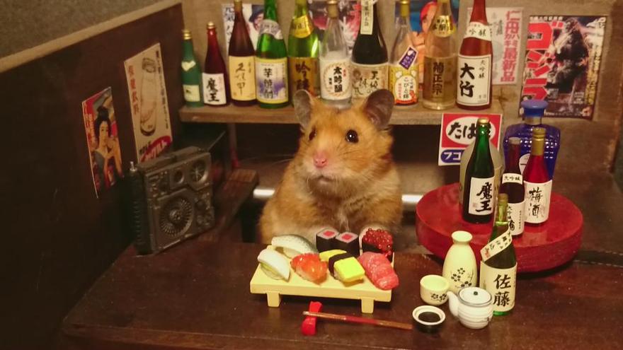 Hamster barman servindo mini alimentos e bebidas (8)