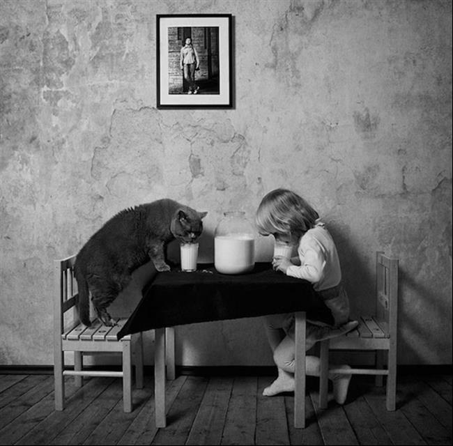 Os-Gatos-Mais-Famosos-da-Internet-Blog-Animal (40)