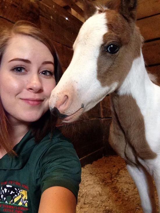 Estes animais apenas querem tirar uma Selfie 10 These animals just want to take a Selfie