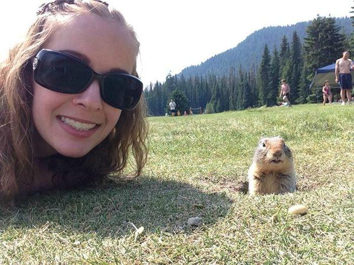 Estes animais apenas querem tirar uma Selfie (13)