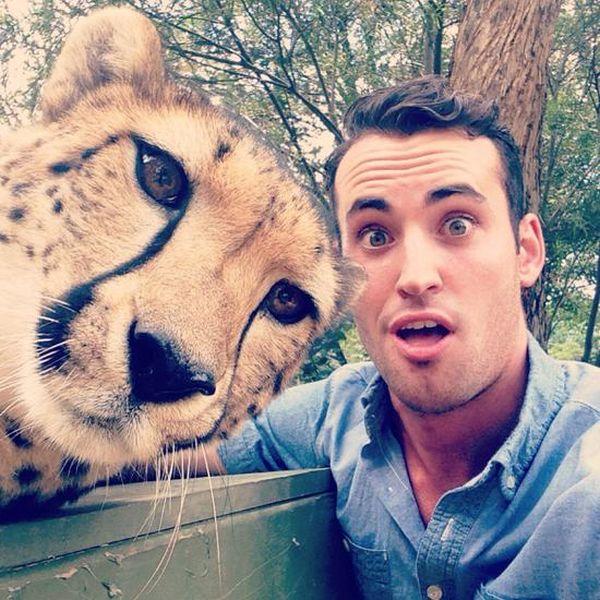 Estes animais apenas querem tirar uma Selfie (15)