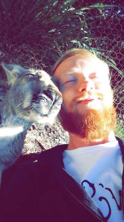 Estes animais apenas querem tirar uma Selfie 6 These animals just want to take a Selfie