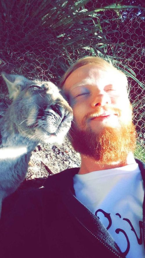 Estes animais apenas querem tirar uma Selfie (6)