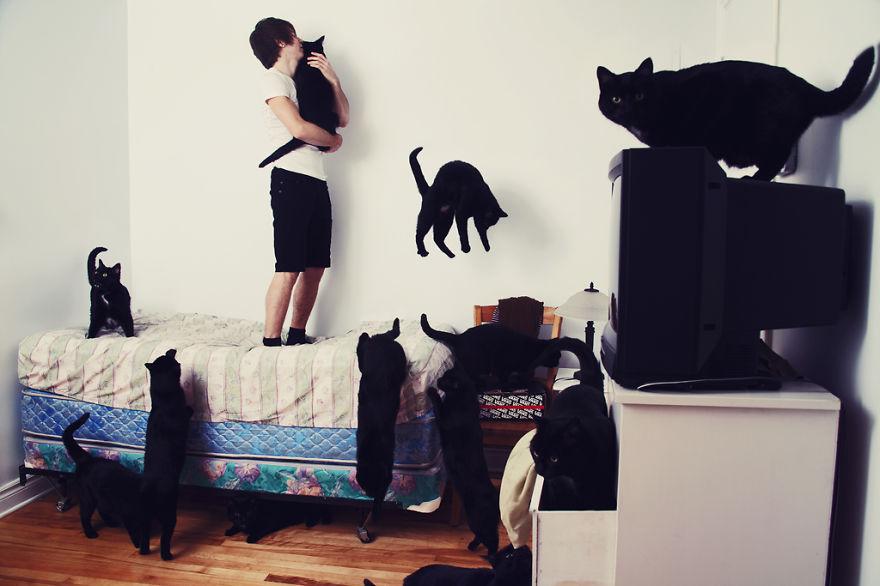 Fotos loucas de Cat Lovers (1)