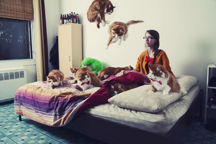 Fotos loucas de Cat Lovers (12)