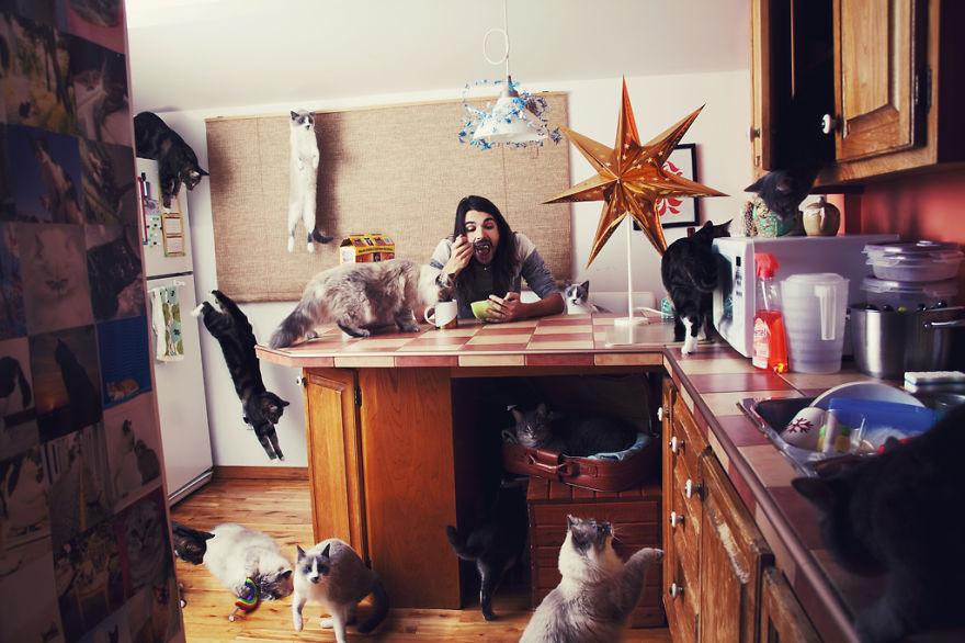 Fotos loucas de Cat Lovers (17)