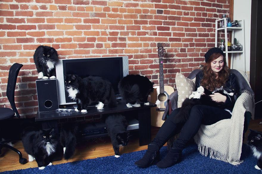 Fotos loucas de Cat Lovers (5)