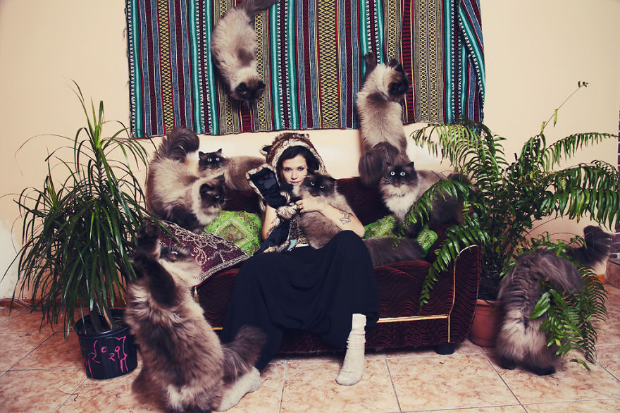 Fotos loucas de Cat Lovers (7)