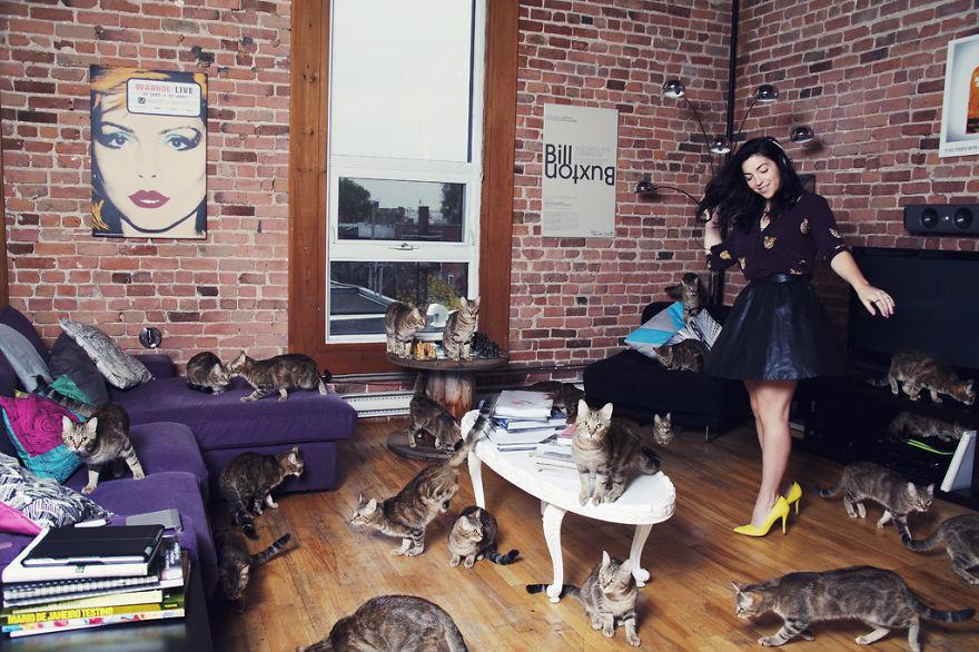 Fotos loucas de Cat Lovers (8)