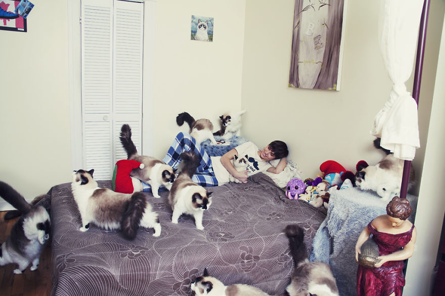 Fotos loucas de Cat Lovers (9)