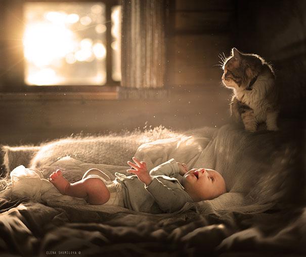 Fotos_Provam_Que_Seus_Filhos_Precisam_Um_Gato (10)