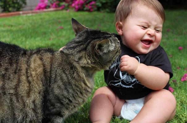 Fotos_Provam_Que_Seus_Filhos_Precisam_Um_Gato (14)