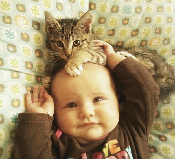 Fotos_Provam_Que_Seus_Filhos_Precisam_Um_Gato (15)