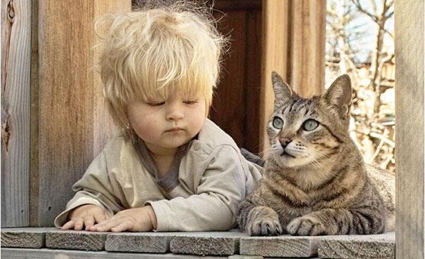 Fotos_Provam_Que_Seus_Filhos_Precisam_Um_Gato (18)