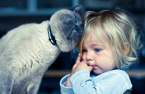 Fotos_Provam_Que_Seus_Filhos_Precisam_Um_Gato (4)