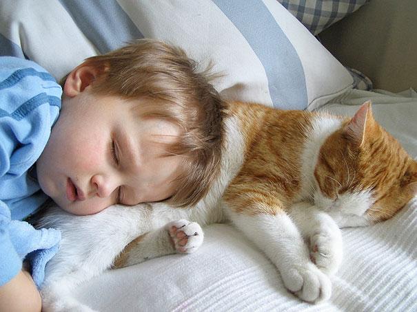 Fotos_Provam_Que_Seus_Filhos_Precisam_Um_Gato (7)