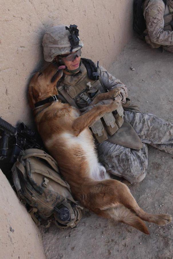 Soldados-e-animais-que-se-tornaram-melhore-amigos (14)