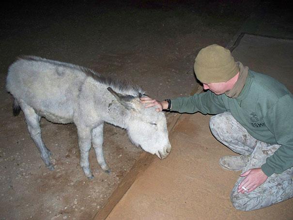 Soldados-e-animais-que-se-tornaram-melhore-amigos (17)