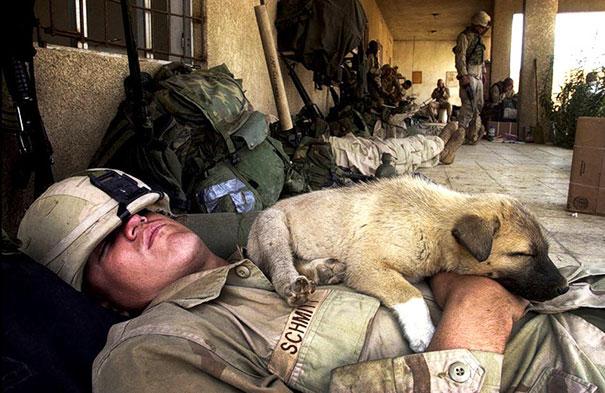 Soldados-e-animais-que-se-tornaram-melhore-amigos (20)