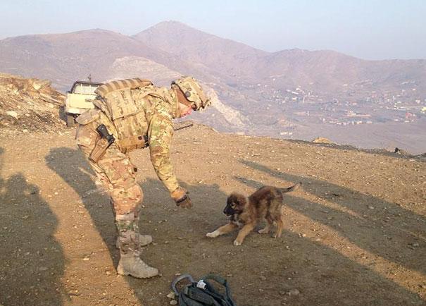 Soldados-e-animais-que-se-tornaram-melhore-amigos (21)