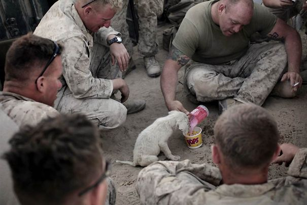 Soldados-e-animais-que-se-tornaram-melhore-amigos (5)