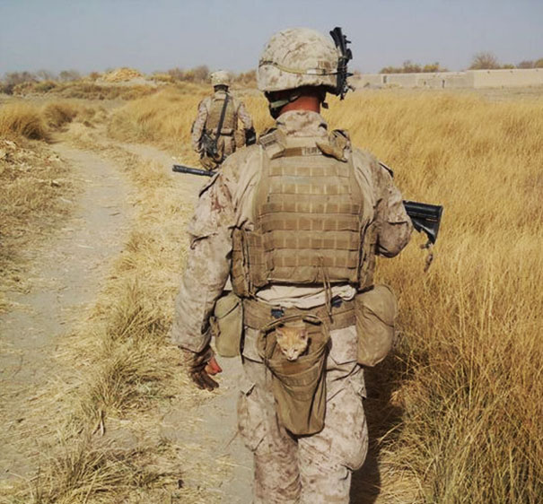 Soldados-e-animais-que-se-tornaram-melhore-amigos (8)