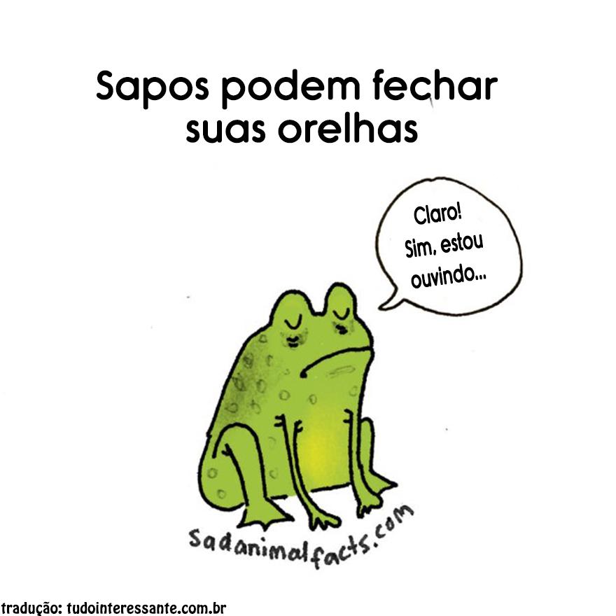 Fatos-tristes-sobre-animais (15)