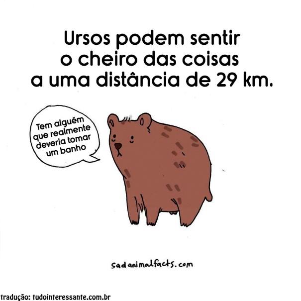 Fatos-tristes-sobre-animais (8)