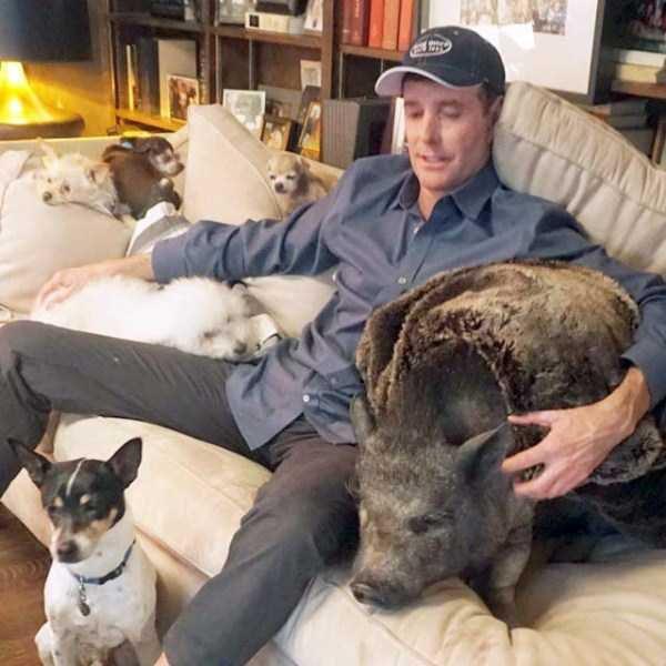 Homem-transformou-casa-em-abrigo-de-animais (1)