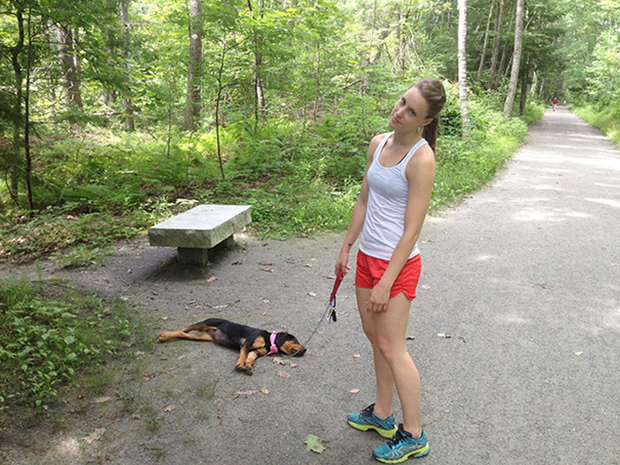 filhotes-de-cachorro-dormem-em-qualquer-lugar (20)