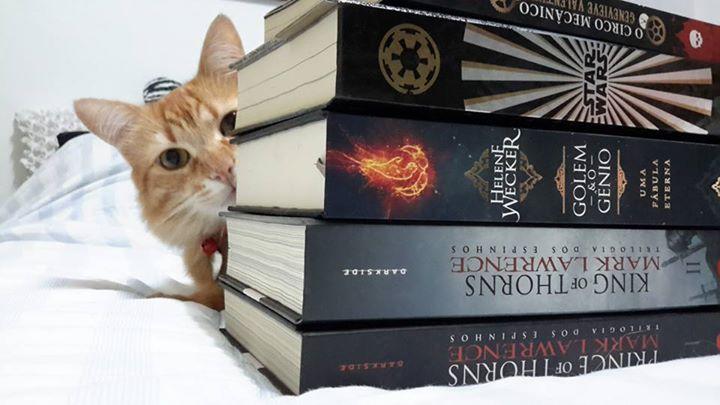 Amantes-de-livros-e-animais (9)