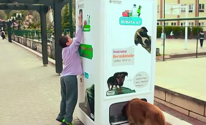 Máquina dá comida para cachorros de rua em troca de garrafas (2)