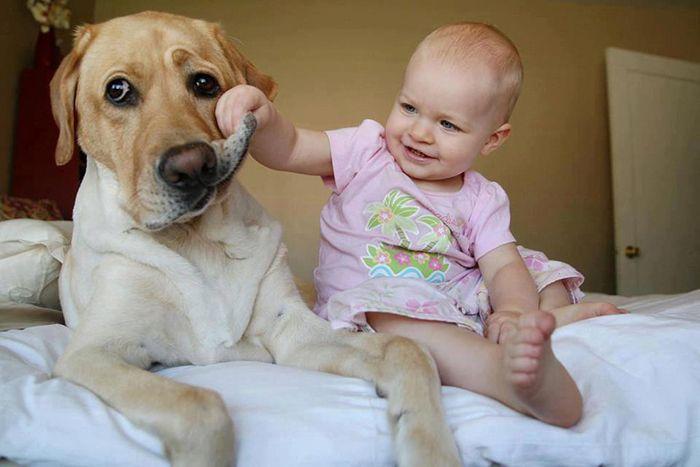 Pequenas-crianças-com-seus-enormes-cães-Blog-Animal (15)