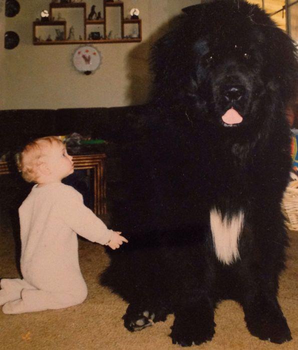 Pequenas-crianças-com-seus-enormes-cães-Blog-Animal (19)