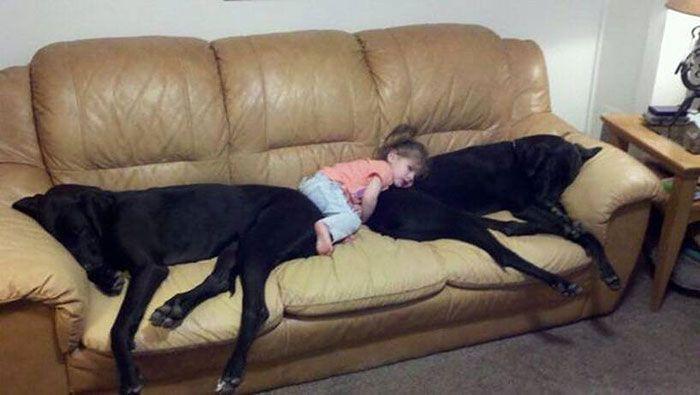 Pequenas-crianças-com-seus-enormes-cães-Blog-Animal (3)