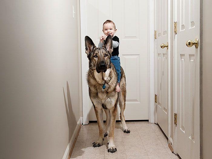 Pequenas-crianças-com-seus-enormes-cães-Blog-Animal (6)