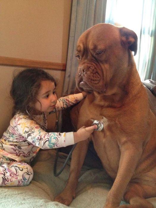 Pequenas-crianças-com-seus-enormes-cães-Blog-Animal (8)